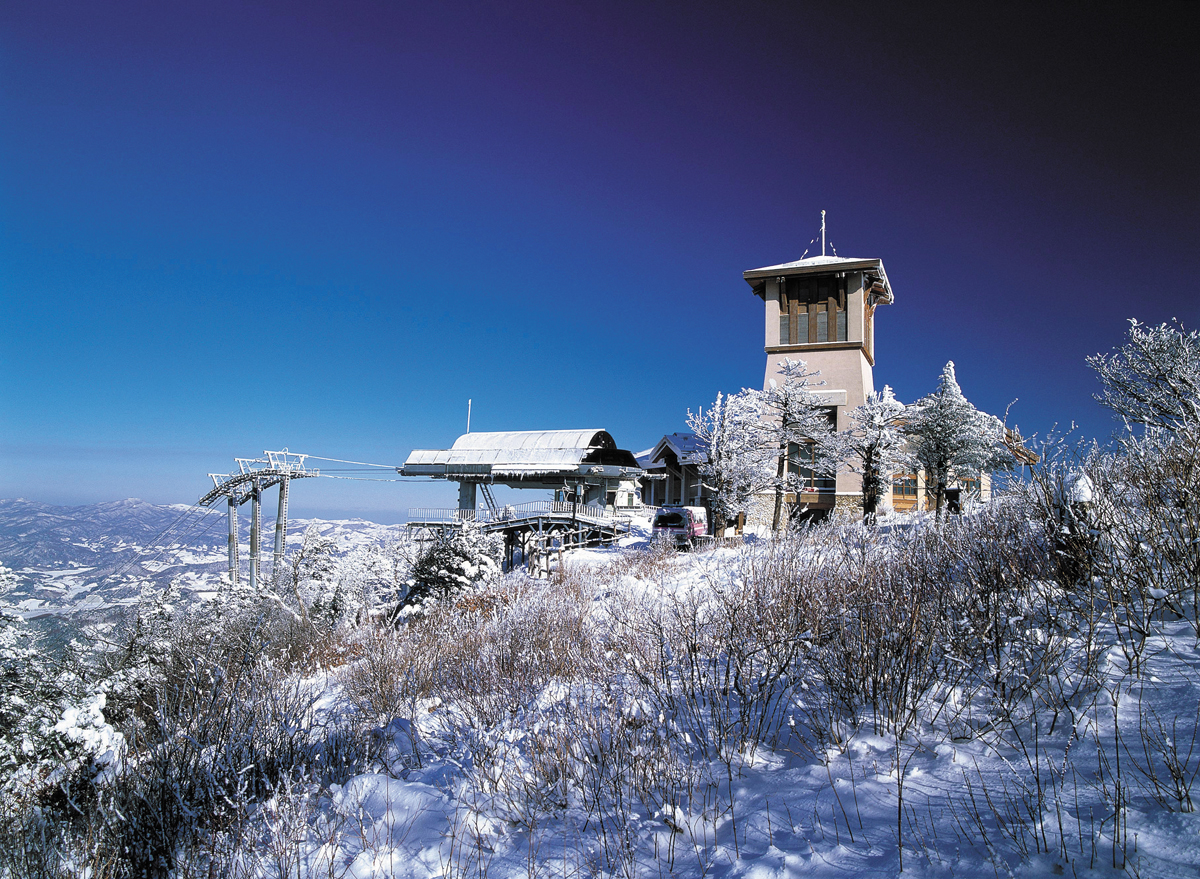 Image result for yongpyong ski resort